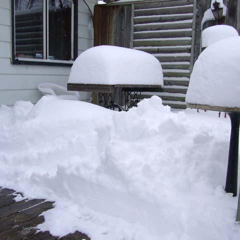 snow0307.jpg